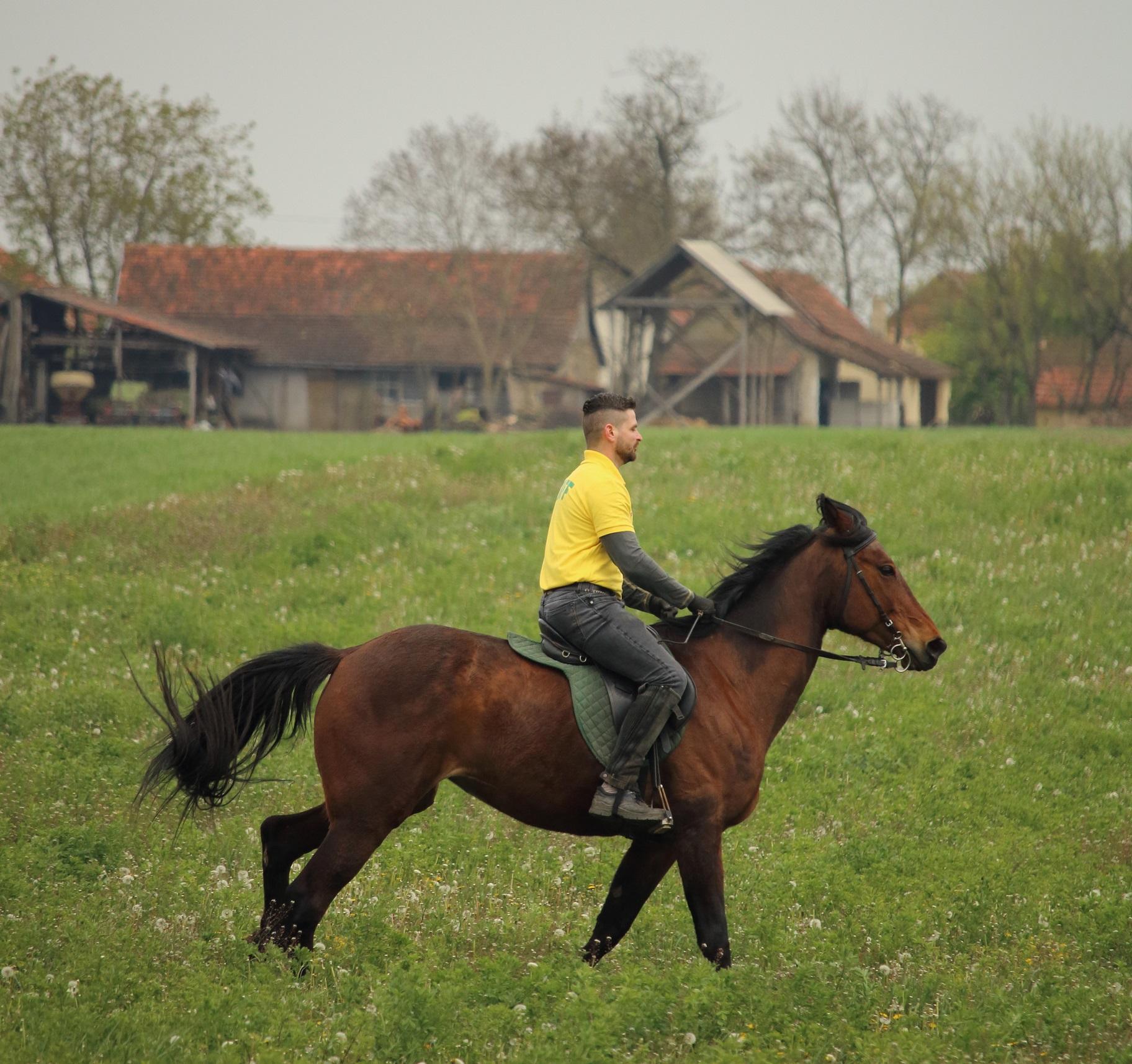 Horseback Riding Trail Across the Balkans, Grant fact Sheet