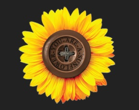 Regional Cooperation Council (RCC) is to award You are a sunflower Foundation as the Champion of Regional Cooperation in South East Europe in 2018, in Sarajevo on 13 March 2019 (Illustration: https://youareasunflower.org).