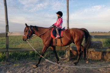 New horseback riding route running through Western Balkans takes visitors from Vojvodina in the north to Hercegovina in the south (Photo: Palic Cluster)