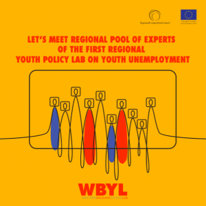 Pool of Experts of the first Regional Youth Lab