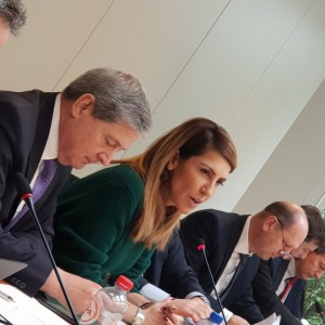 RCC Secretary General, Majlinda Bregu, addresses the participants of the second round of negotiations on the new Regional Roaming Agreement for the Western Balkans, organized by the RCC on 24 January 2019 in Brussels. (Photo: RCC/Ivana Petricevic)