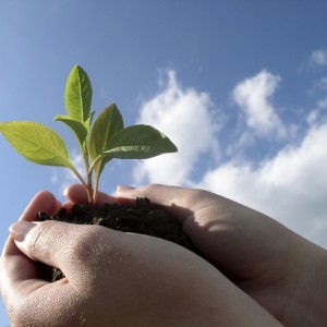 RCC to present South East Europe 2020 strategy for creating 1 million jobs in the region