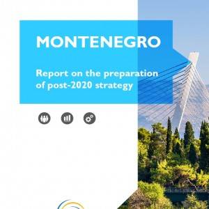 Report on the preparation of post-2020 Strategy in Montenegro