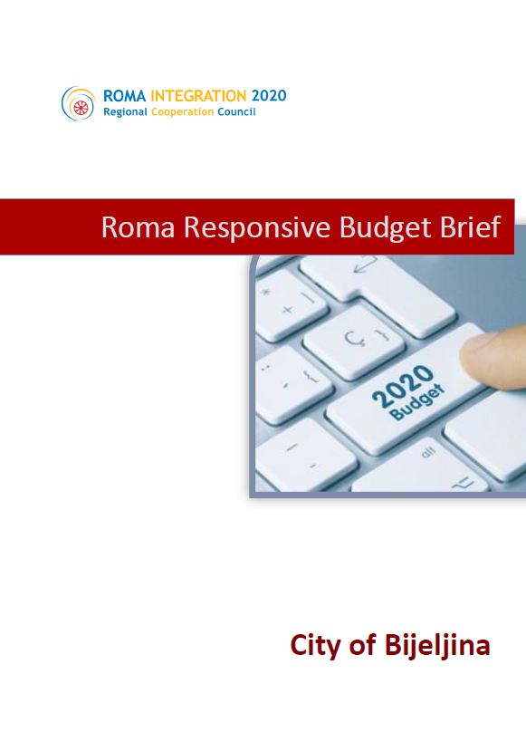 Policy Brief Roma Responsive Budgeting Bosnia and Herzegovina, City of Bijeljina, 2019