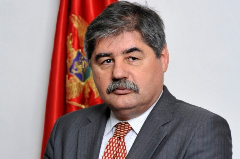 Zoran Jankovic, Acting Director General, Directorate for Multilateral Affairs, Ministry of Foreign Affairs, Montenegro (Photo: Courtesy of Mr. Jankovic)