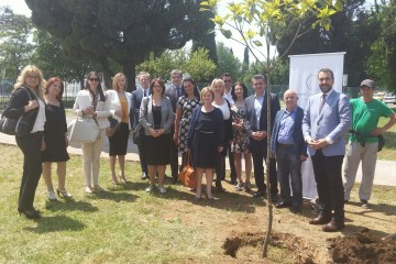 Establishing Regional Working Group on Environment ended with a memorable tree-planting ceremony. Podgorica, 18 May 2015. (Photo: RCC/Srdjan Susic)